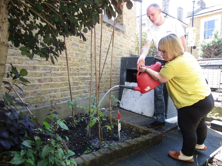 watering-plantsjpg